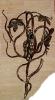 Цветы кованные_8